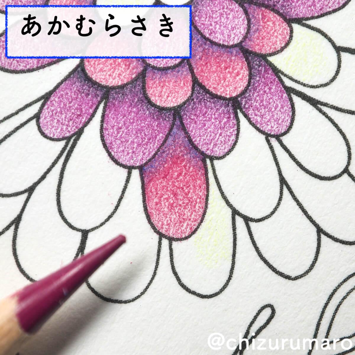 f:id:chizurumaro:20200415164640j:plain