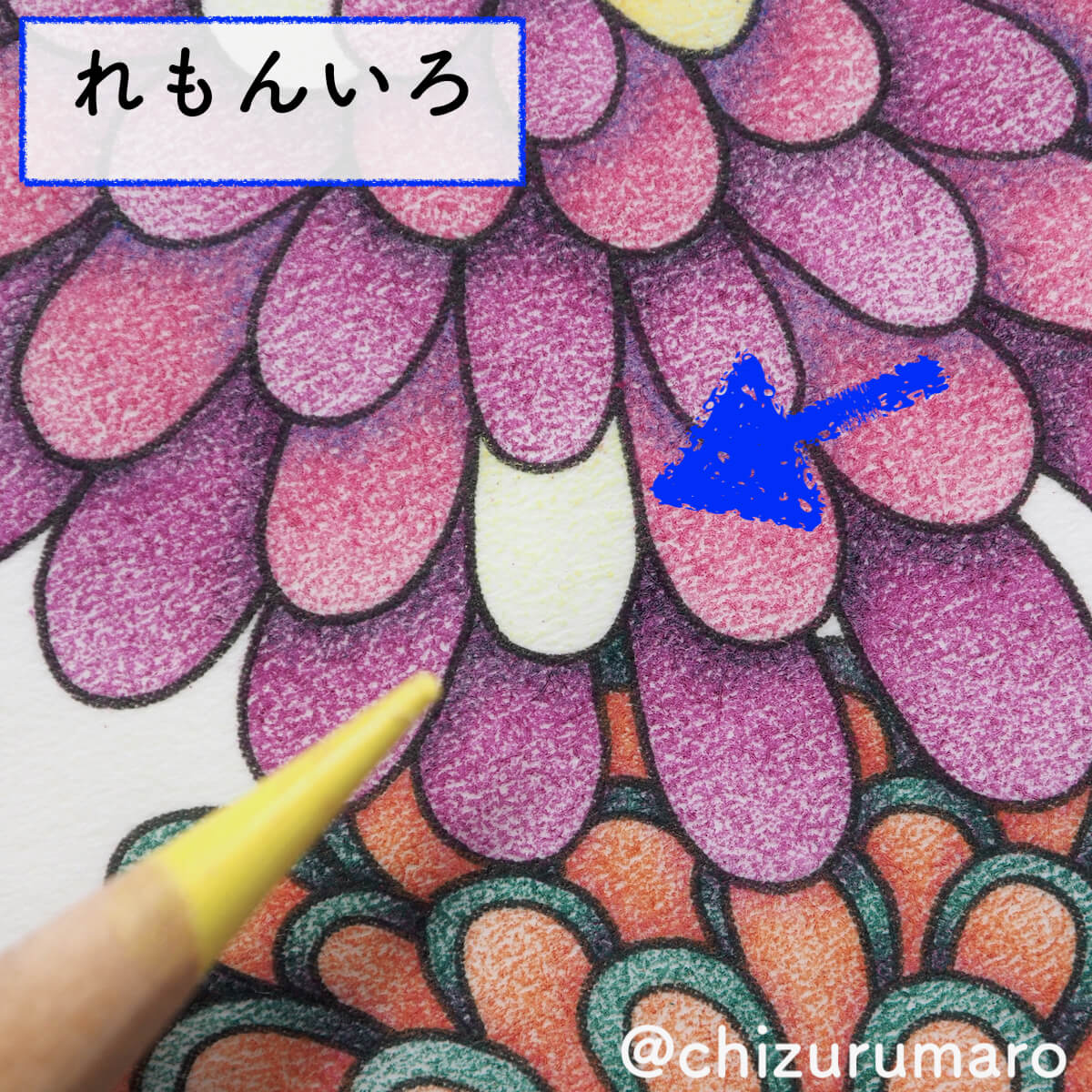 f:id:chizurumaro:20200415165905j:plain