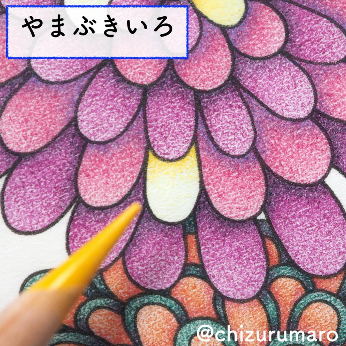 f:id:chizurumaro:20200415165917j:plain