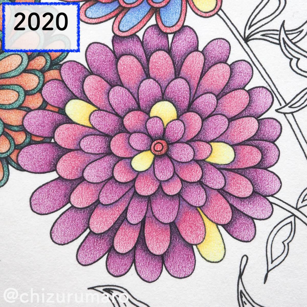 f:id:chizurumaro:20200415170653j:plain