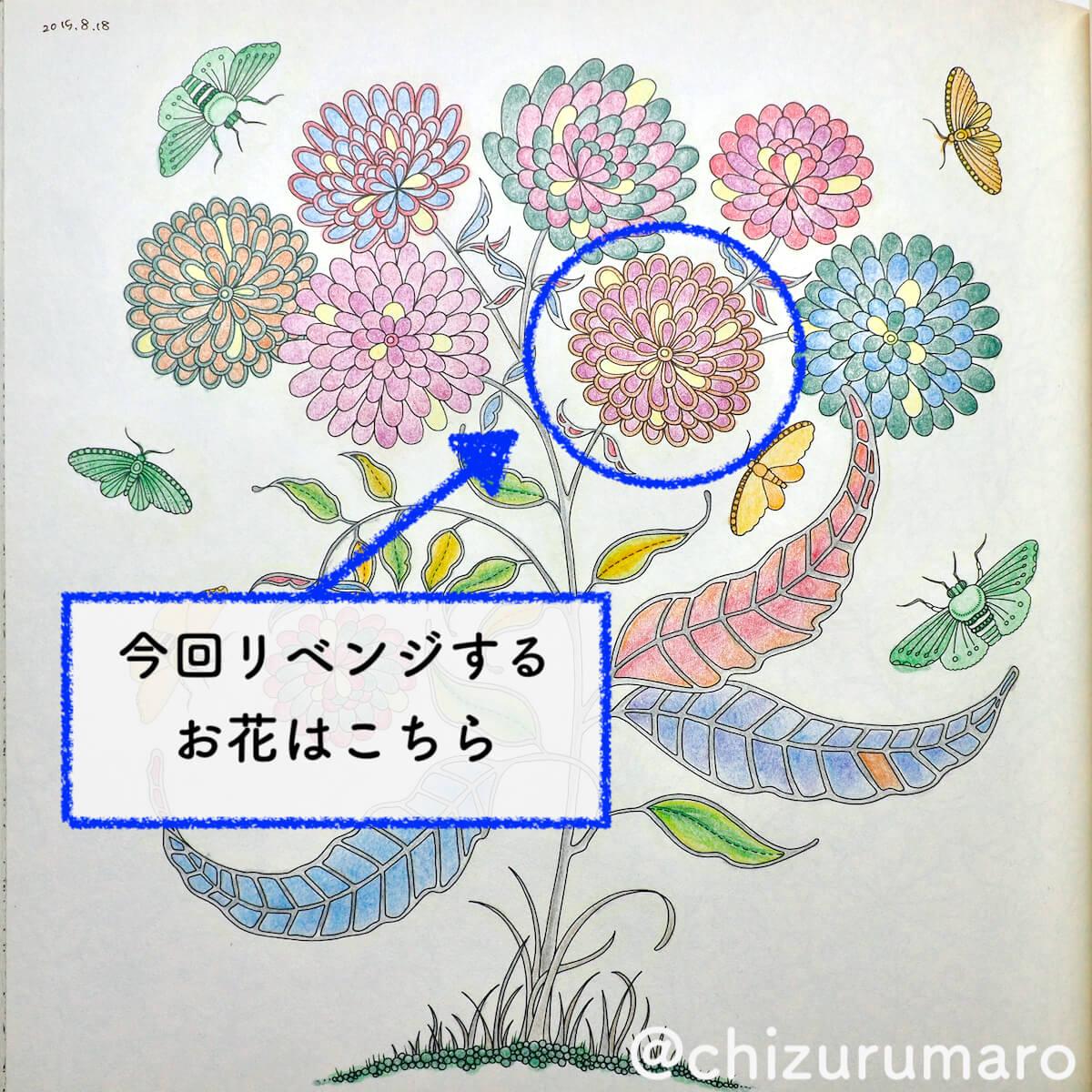 f:id:chizurumaro:20200422152234j:plain
