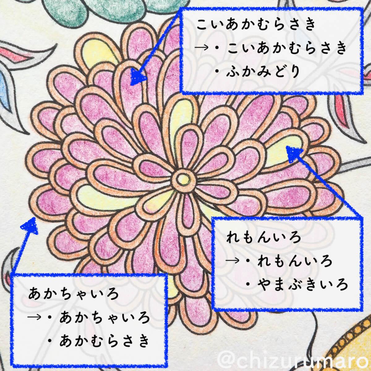 f:id:chizurumaro:20200422152337j:plain