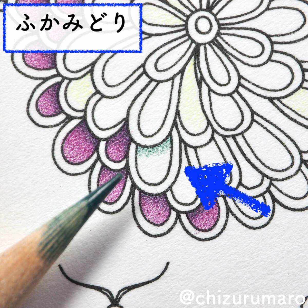 f:id:chizurumaro:20200422152539j:plain