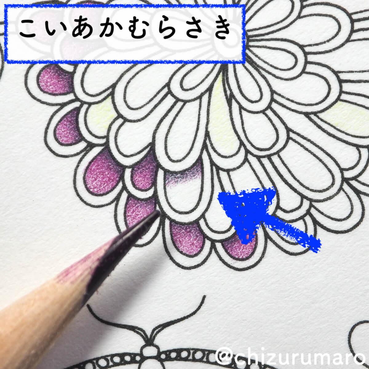 f:id:chizurumaro:20200422152553j:plain