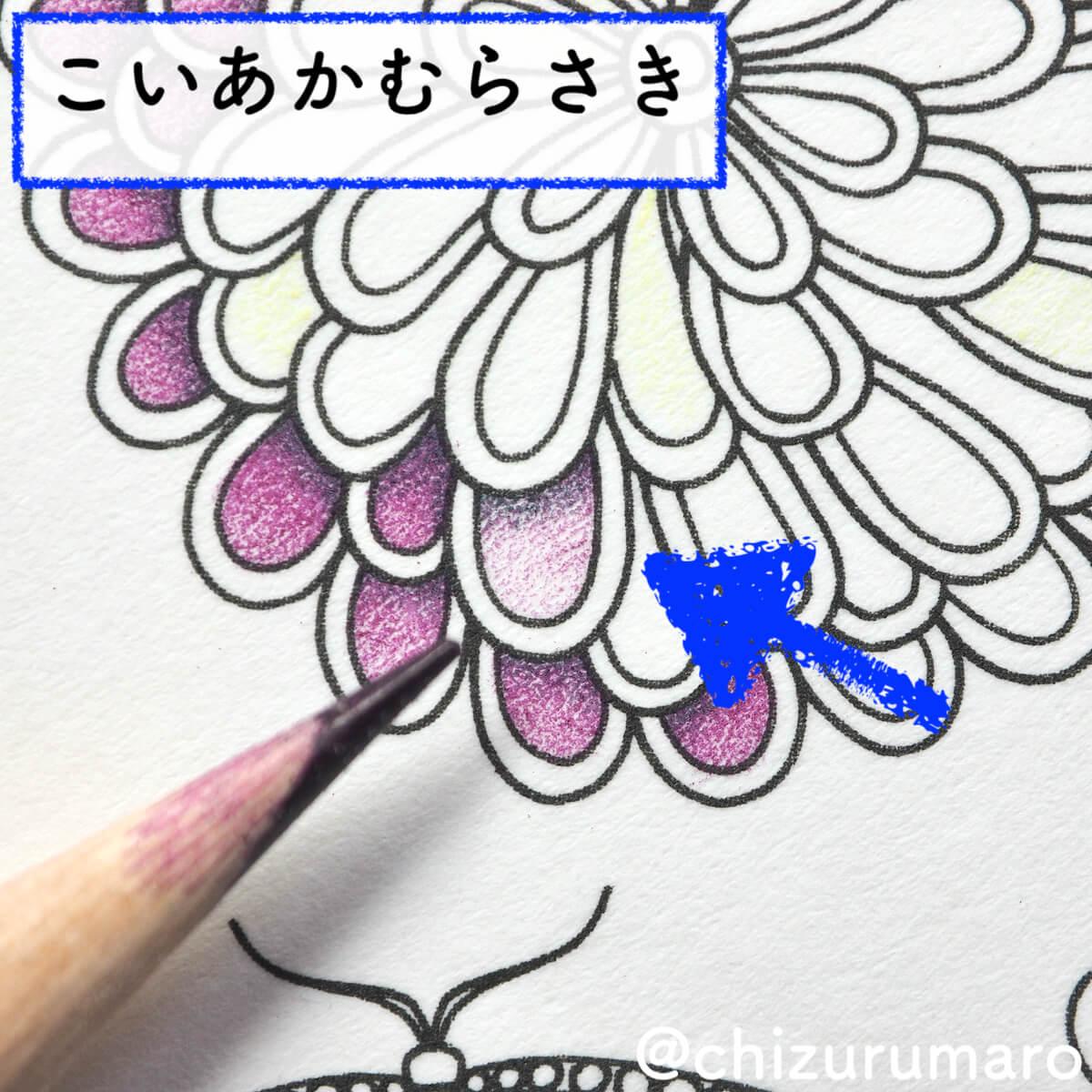 f:id:chizurumaro:20200422152611j:plain