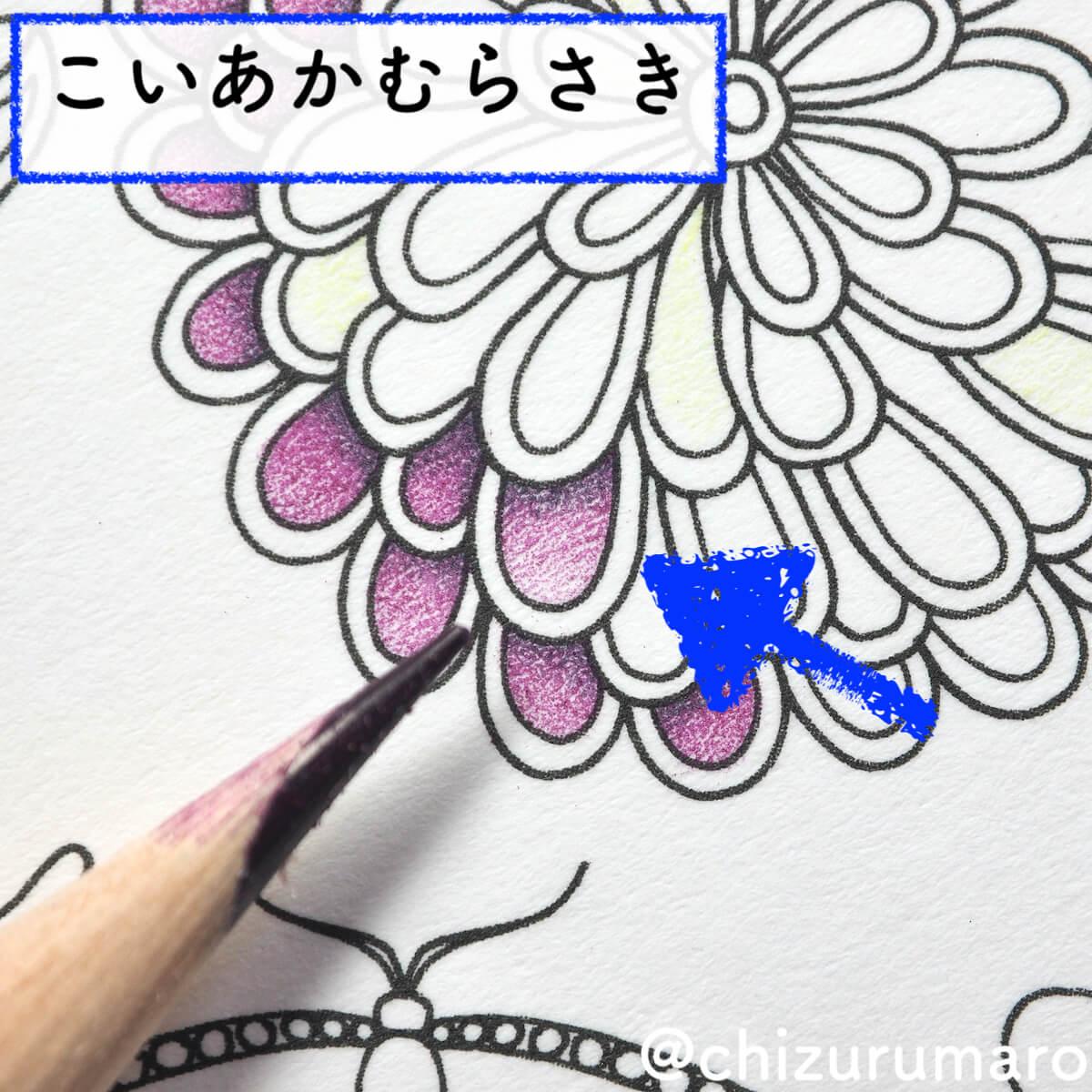 f:id:chizurumaro:20200422152628j:plain