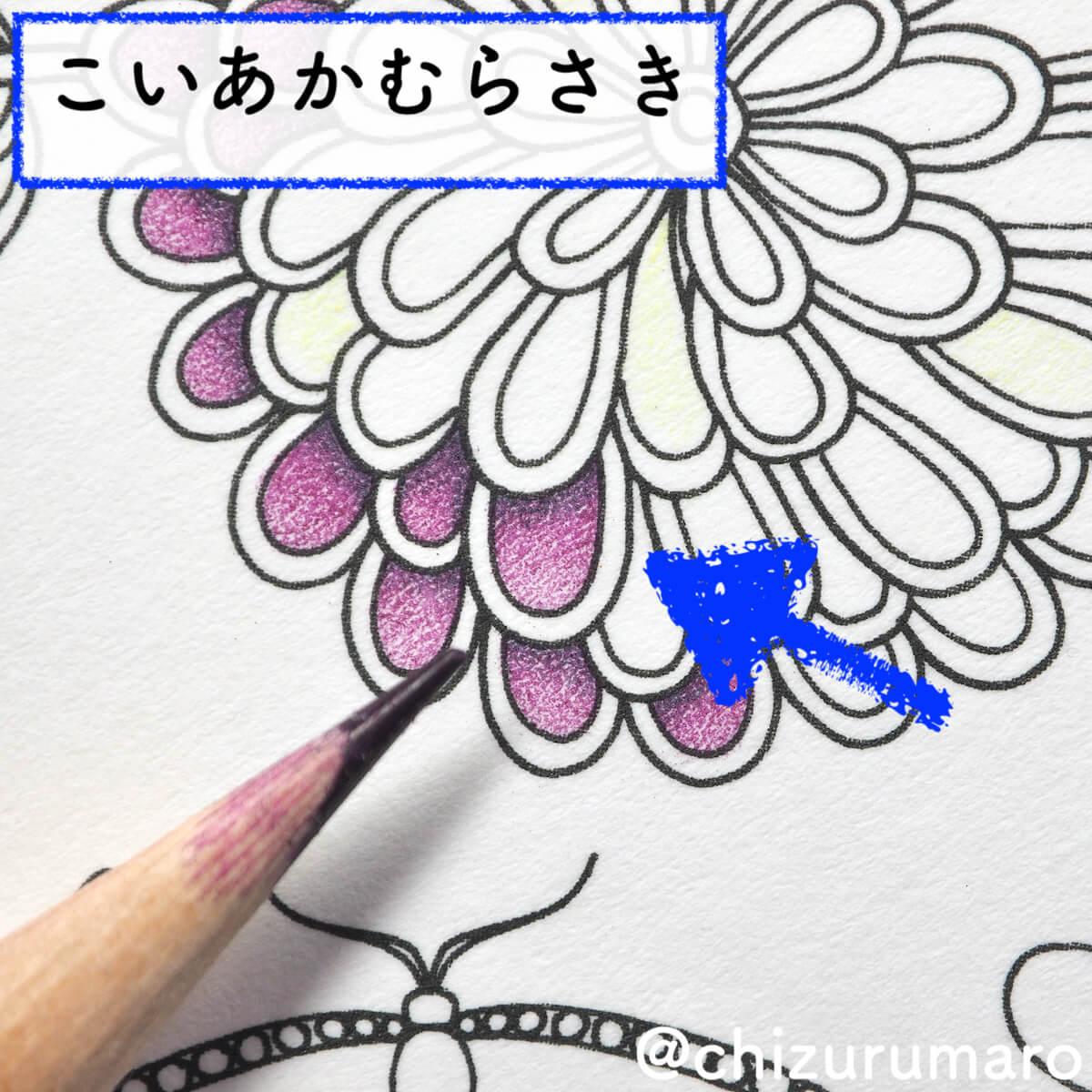 f:id:chizurumaro:20200422152647j:plain