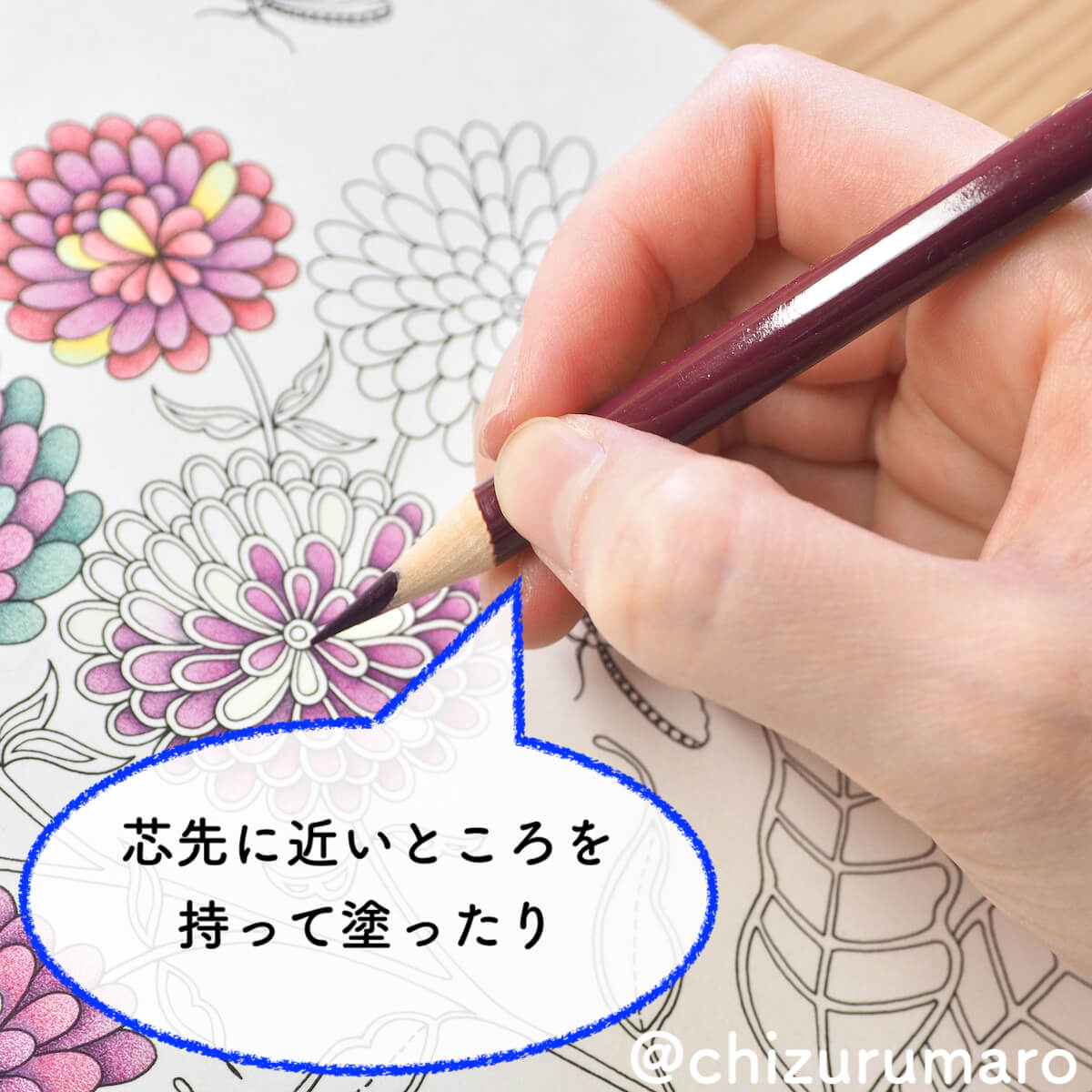 f:id:chizurumaro:20200422152925j:plain