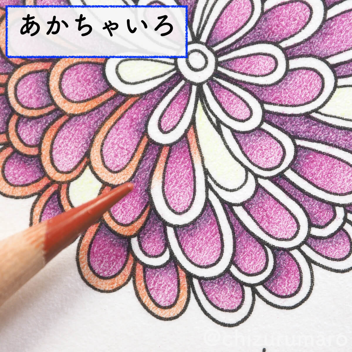 f:id:chizurumaro:20200422153028j:plain