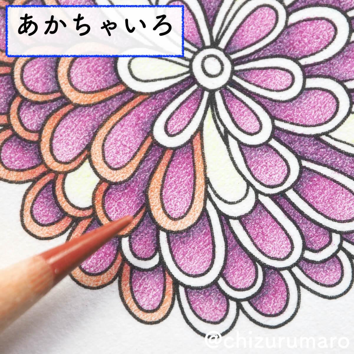 f:id:chizurumaro:20200422153043j:plain