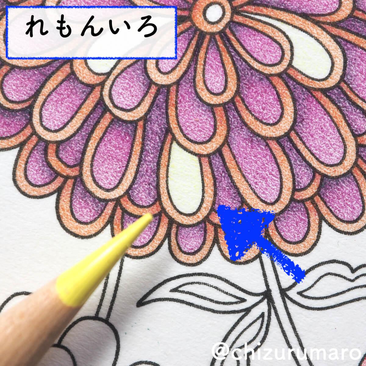 f:id:chizurumaro:20200422153123j:plain