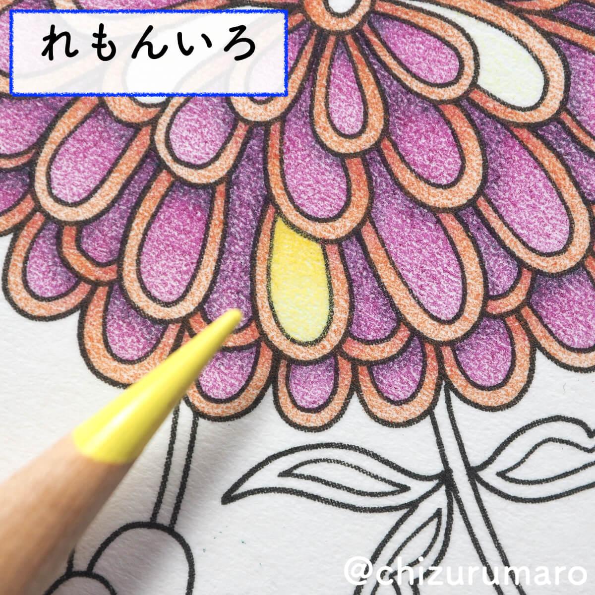 f:id:chizurumaro:20200422153149j:plain