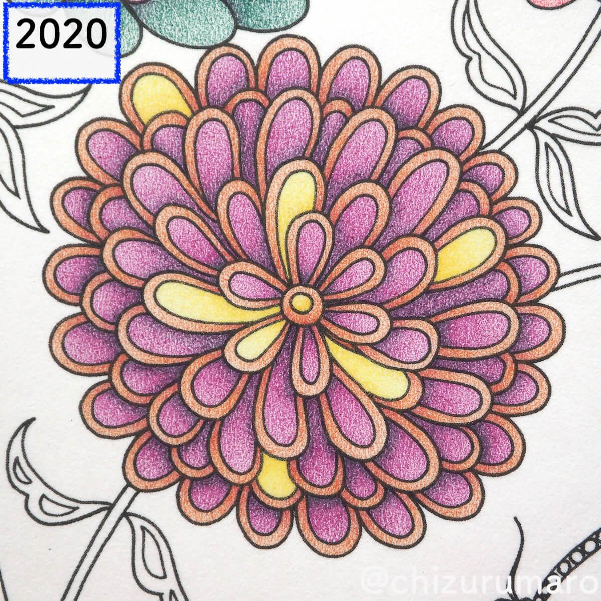 f:id:chizurumaro:20200423112047j:plain