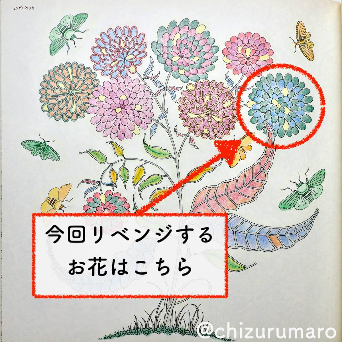 f:id:chizurumaro:20200430150152j:plain