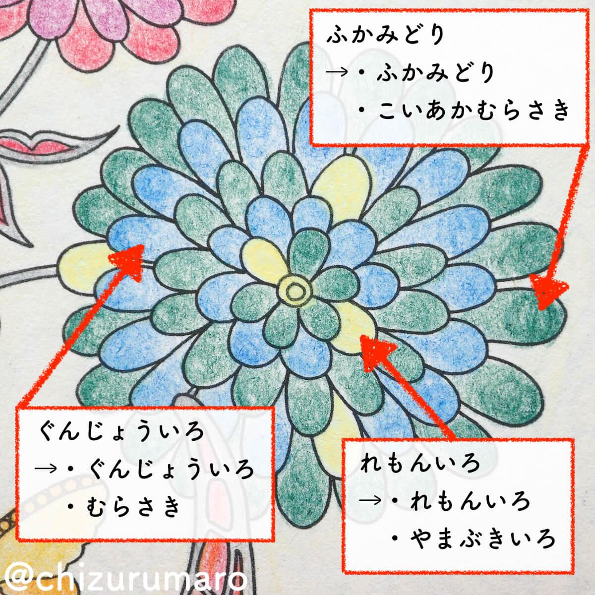 f:id:chizurumaro:20200430150311j:plain