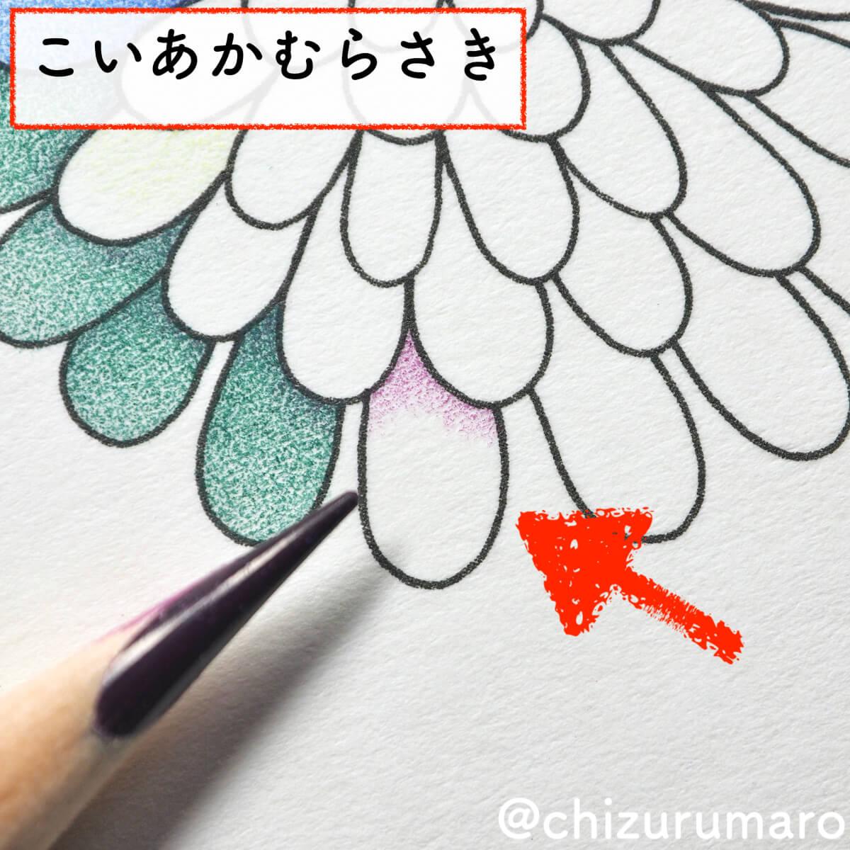 f:id:chizurumaro:20200430150424j:plain