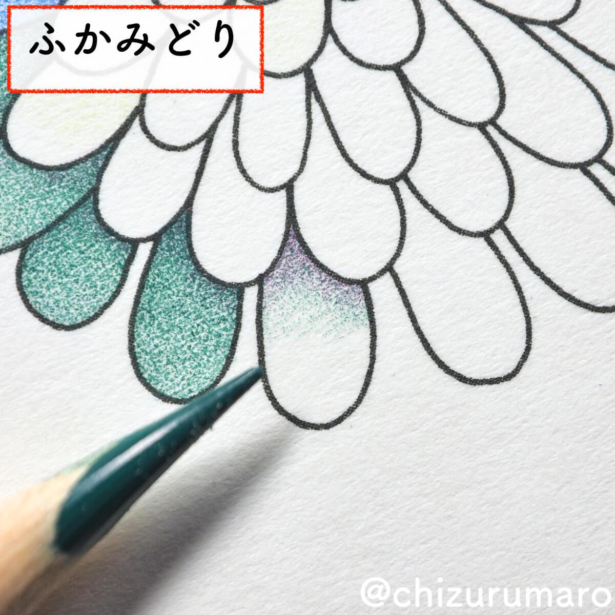 f:id:chizurumaro:20200430150444j:plain
