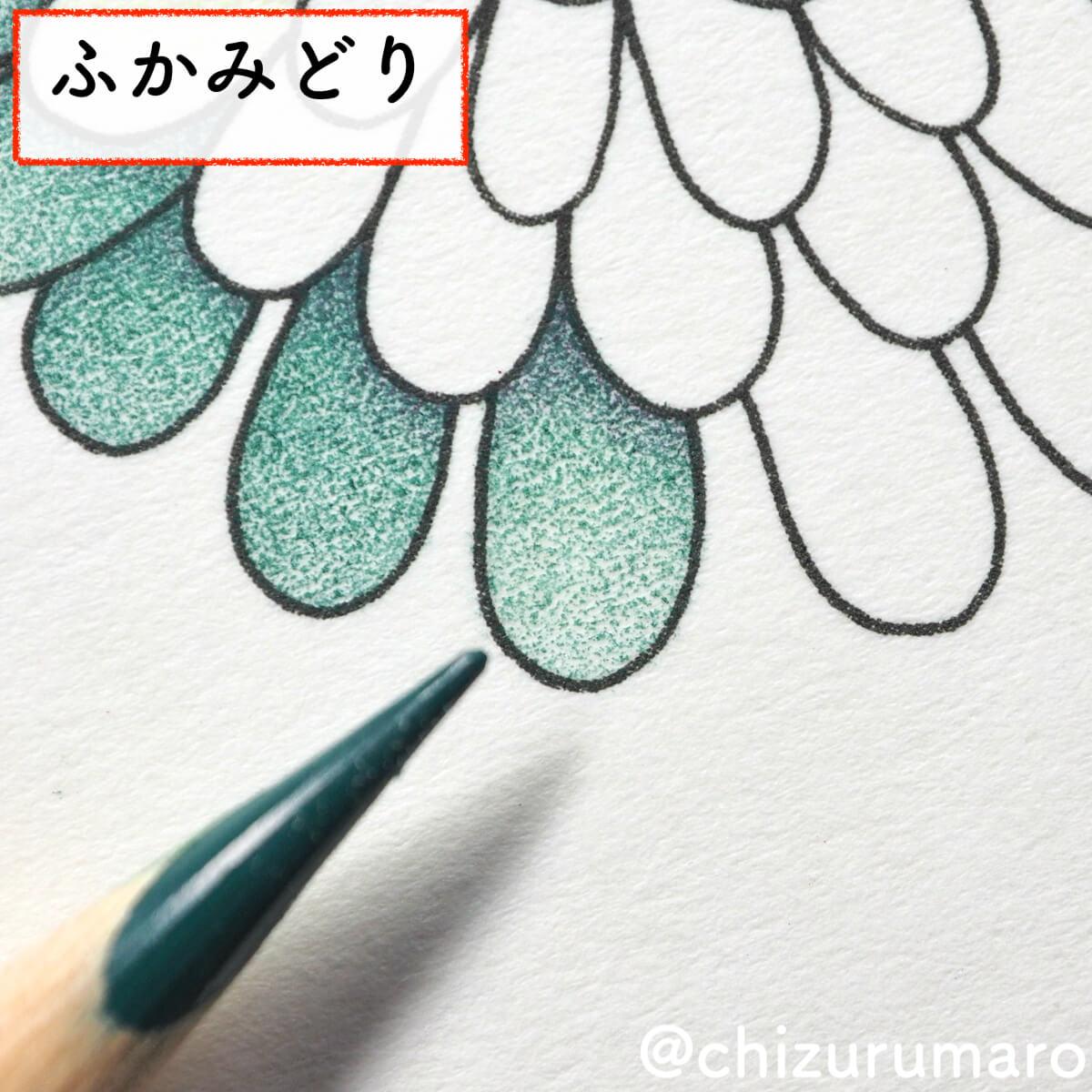 f:id:chizurumaro:20200430150513j:plain