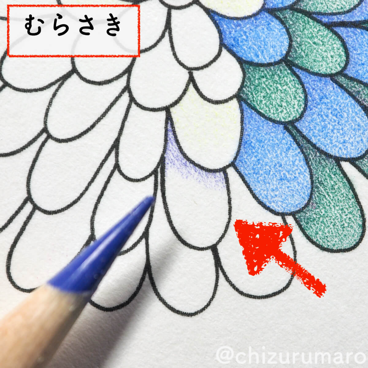f:id:chizurumaro:20200430150559j:plain