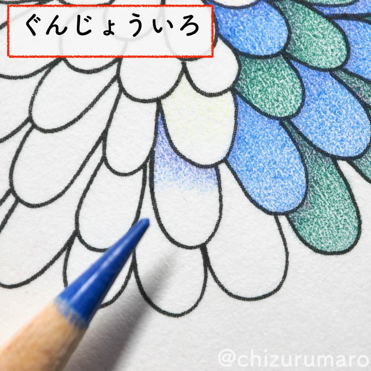 f:id:chizurumaro:20200430151101j:plain