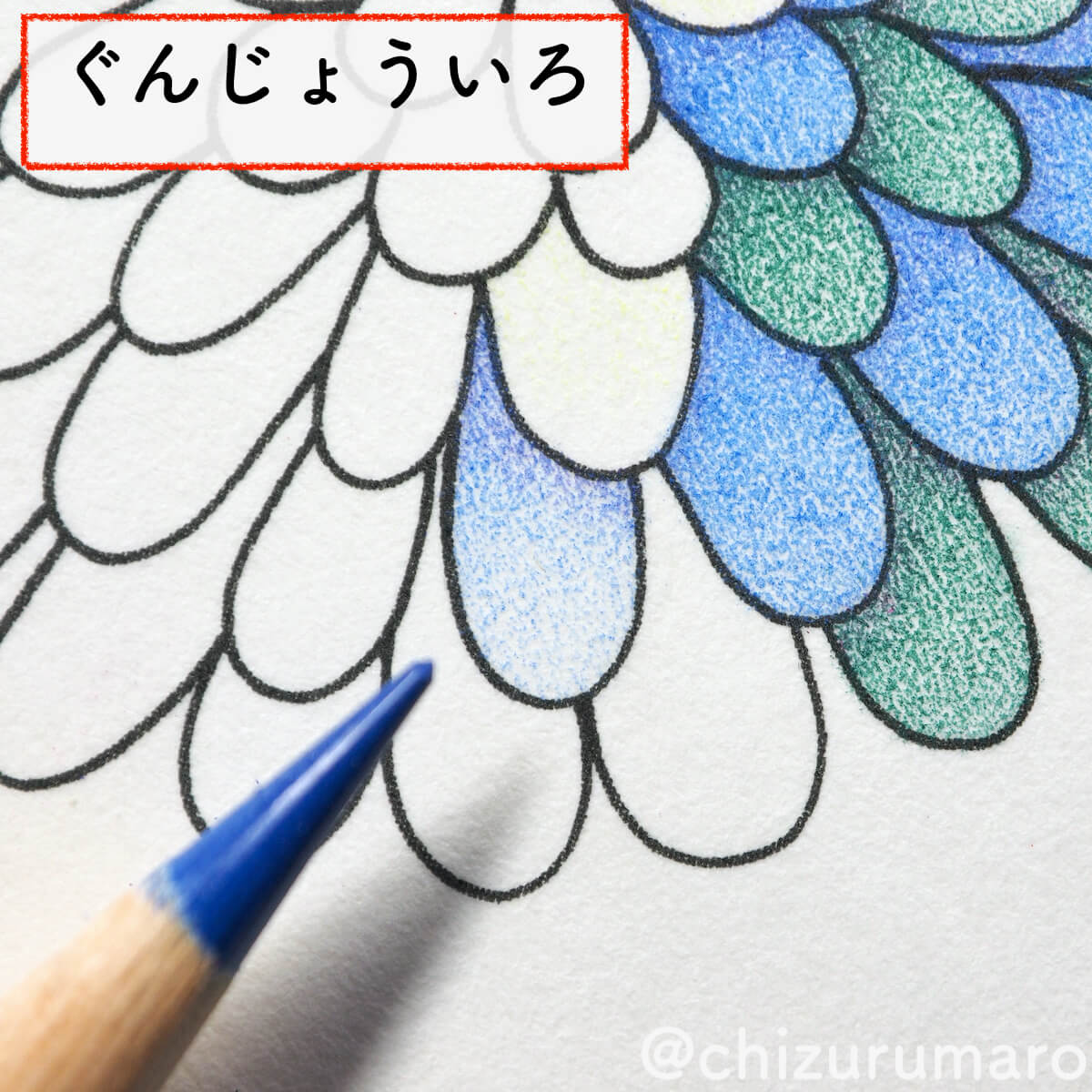 f:id:chizurumaro:20200430151114j:plain