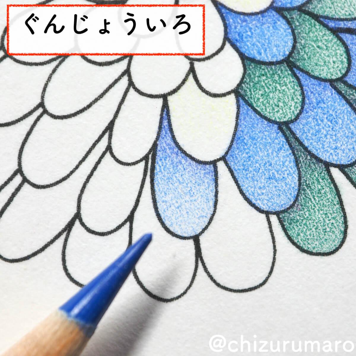 f:id:chizurumaro:20200430151129j:plain