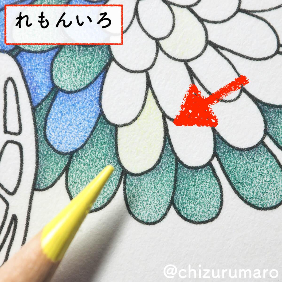 f:id:chizurumaro:20200430151240j:plain