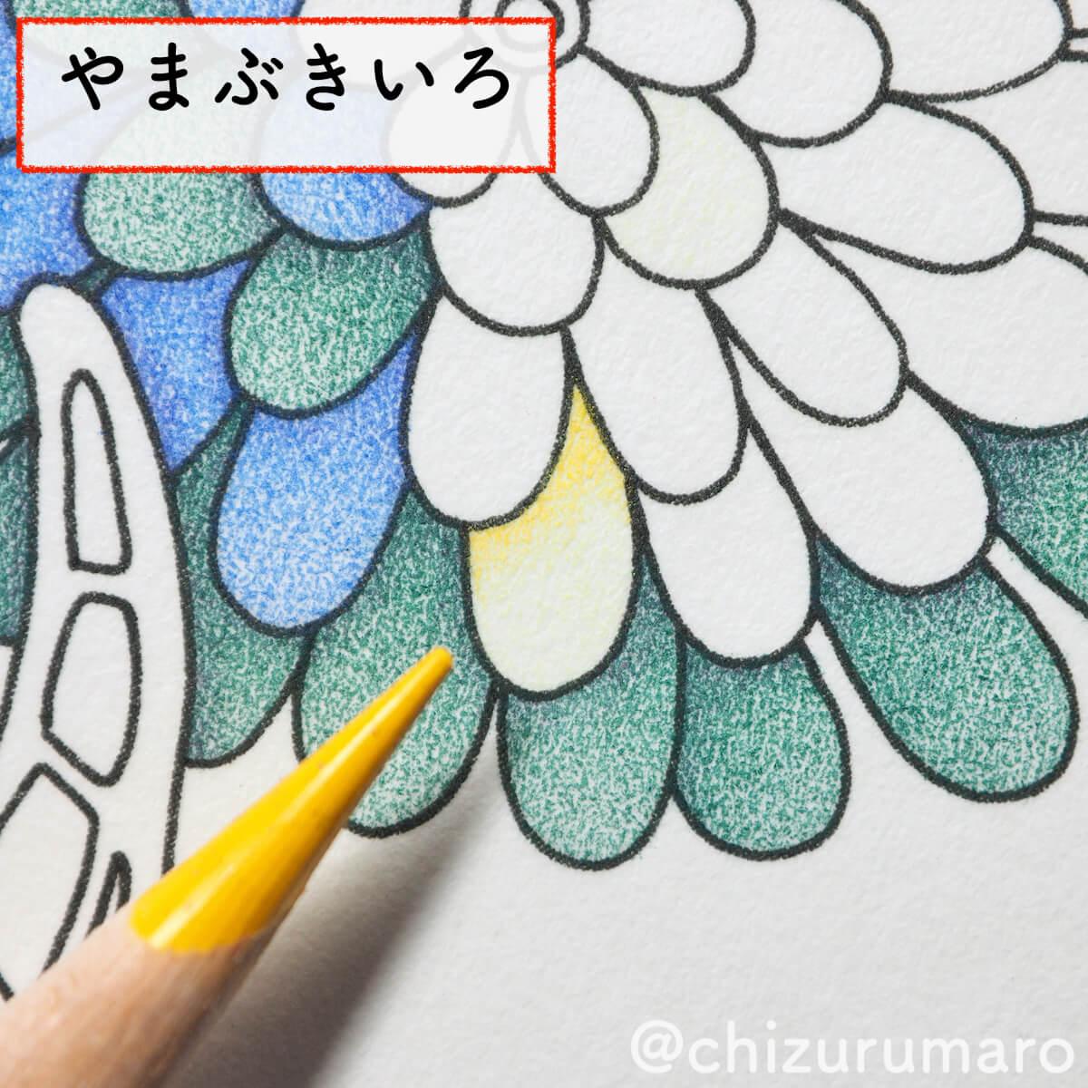 f:id:chizurumaro:20200430151252j:plain