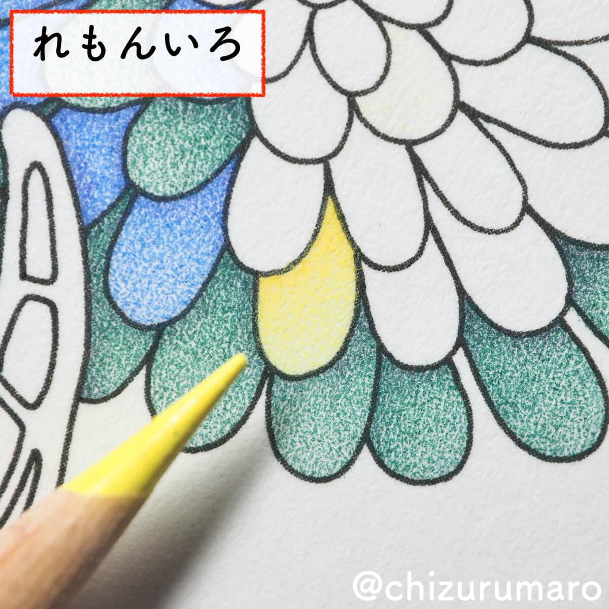 f:id:chizurumaro:20200430151306j:plain