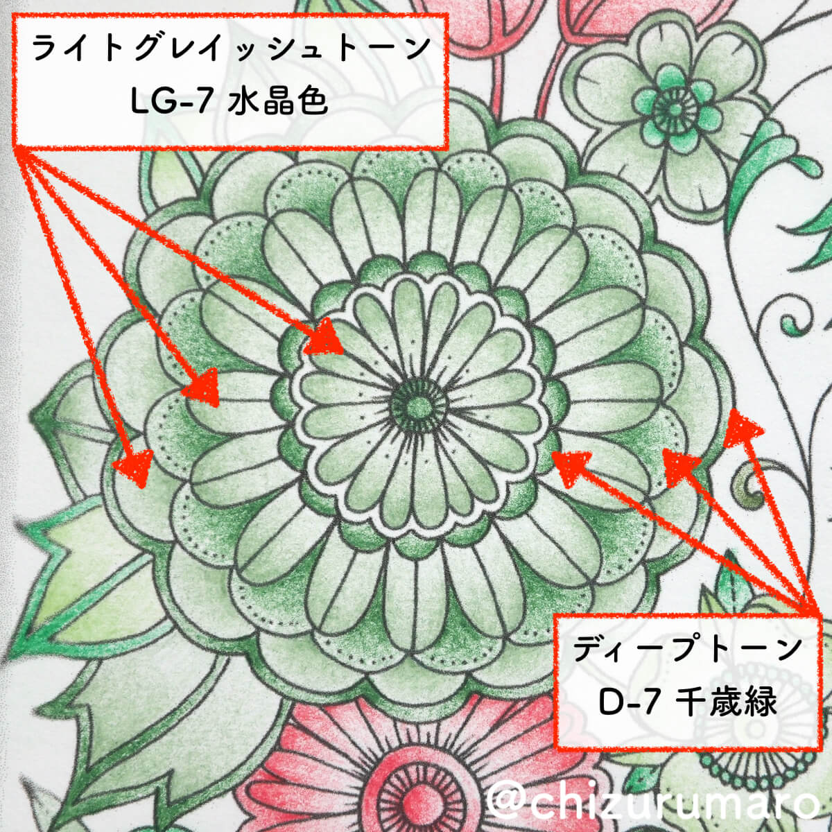 f:id:chizurumaro:20200506121747j:plain