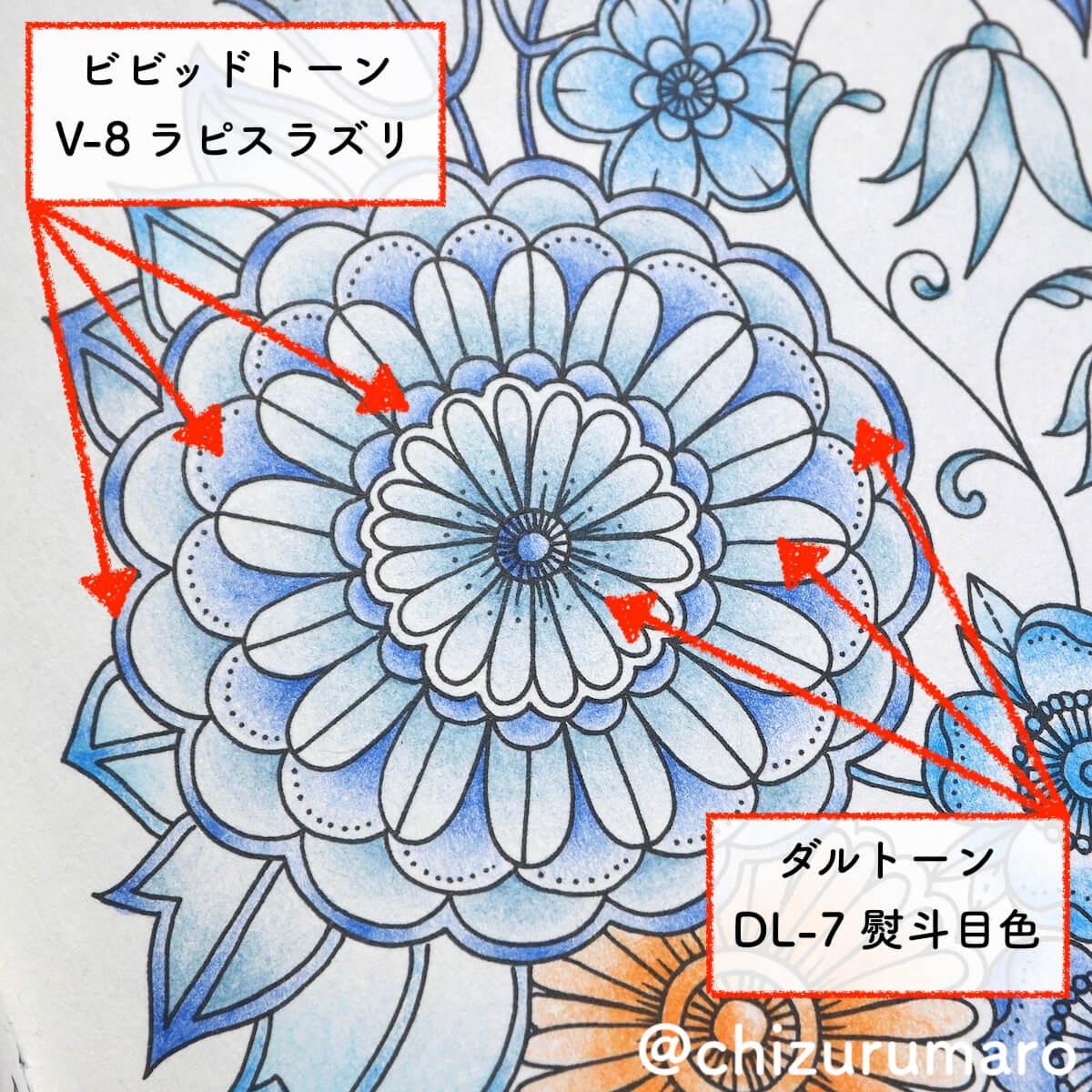 f:id:chizurumaro:20200506124258j:plain