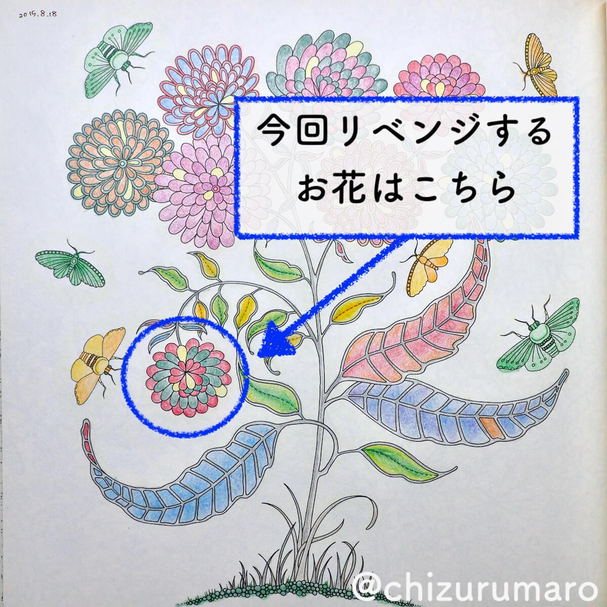 f:id:chizurumaro:20200511124125j:plain