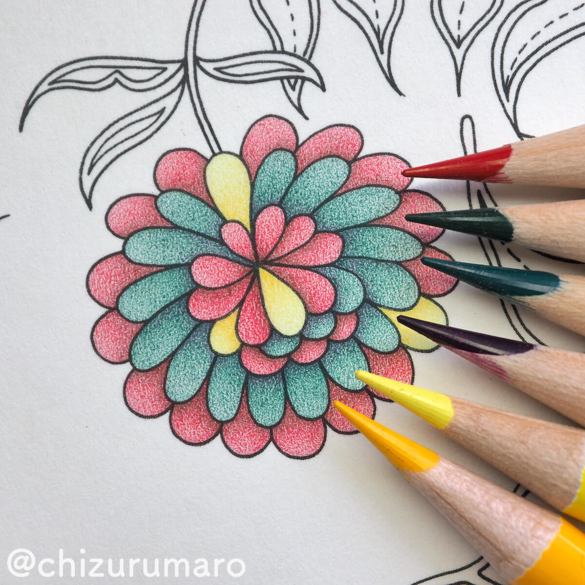 f:id:chizurumaro:20200511124249j:plain
