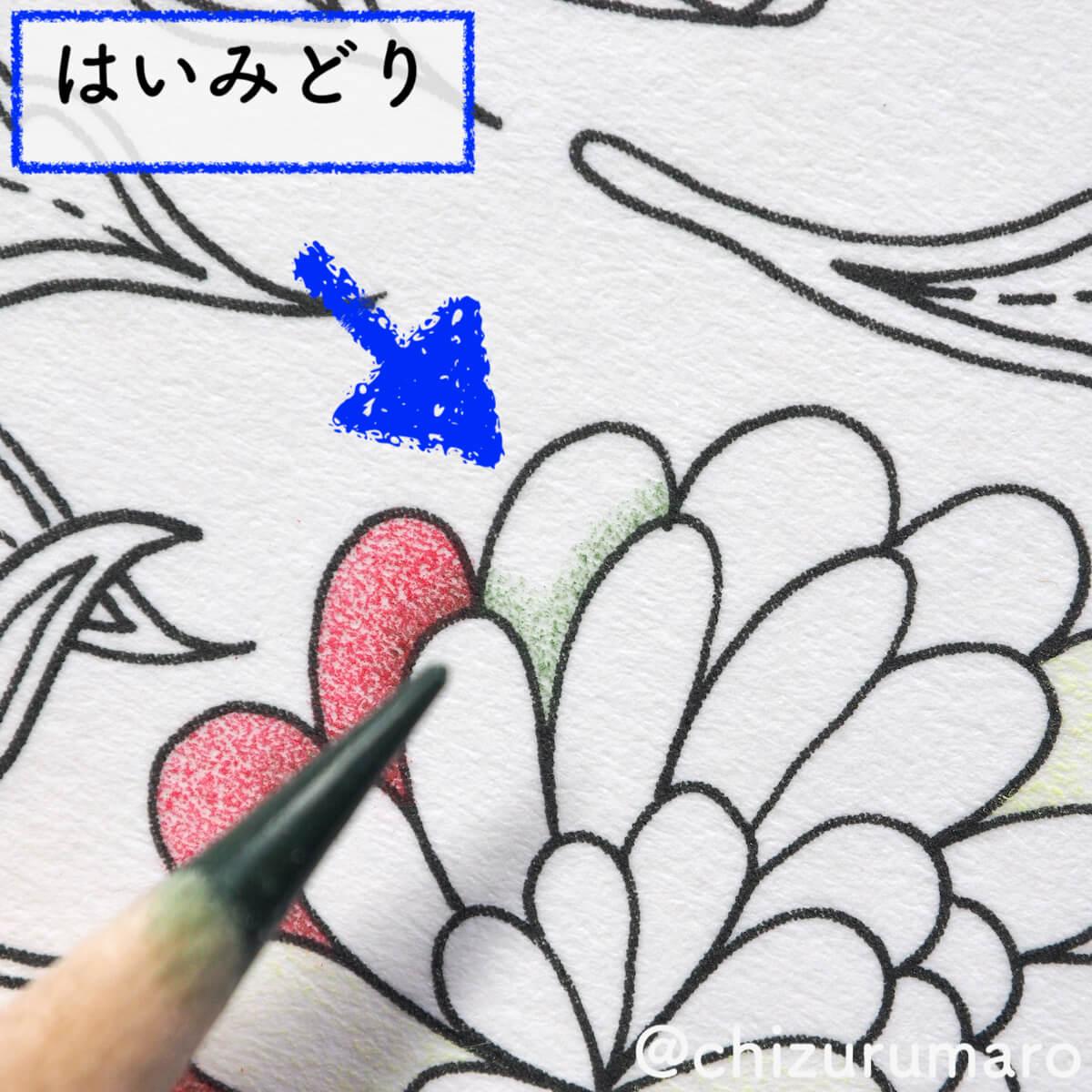 f:id:chizurumaro:20200511124807j:plain