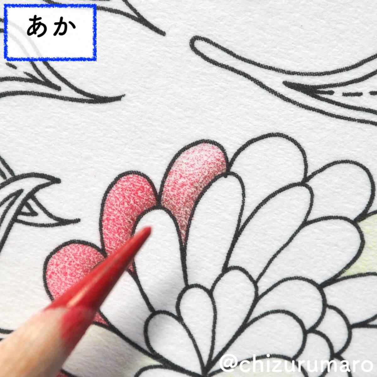 f:id:chizurumaro:20200511124911j:plain