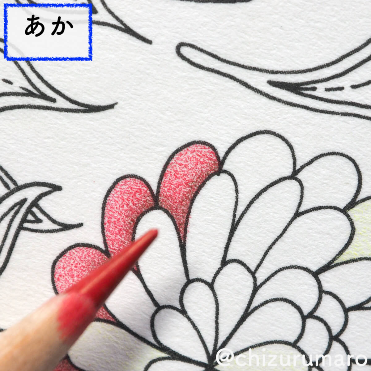 f:id:chizurumaro:20200511124922j:plain
