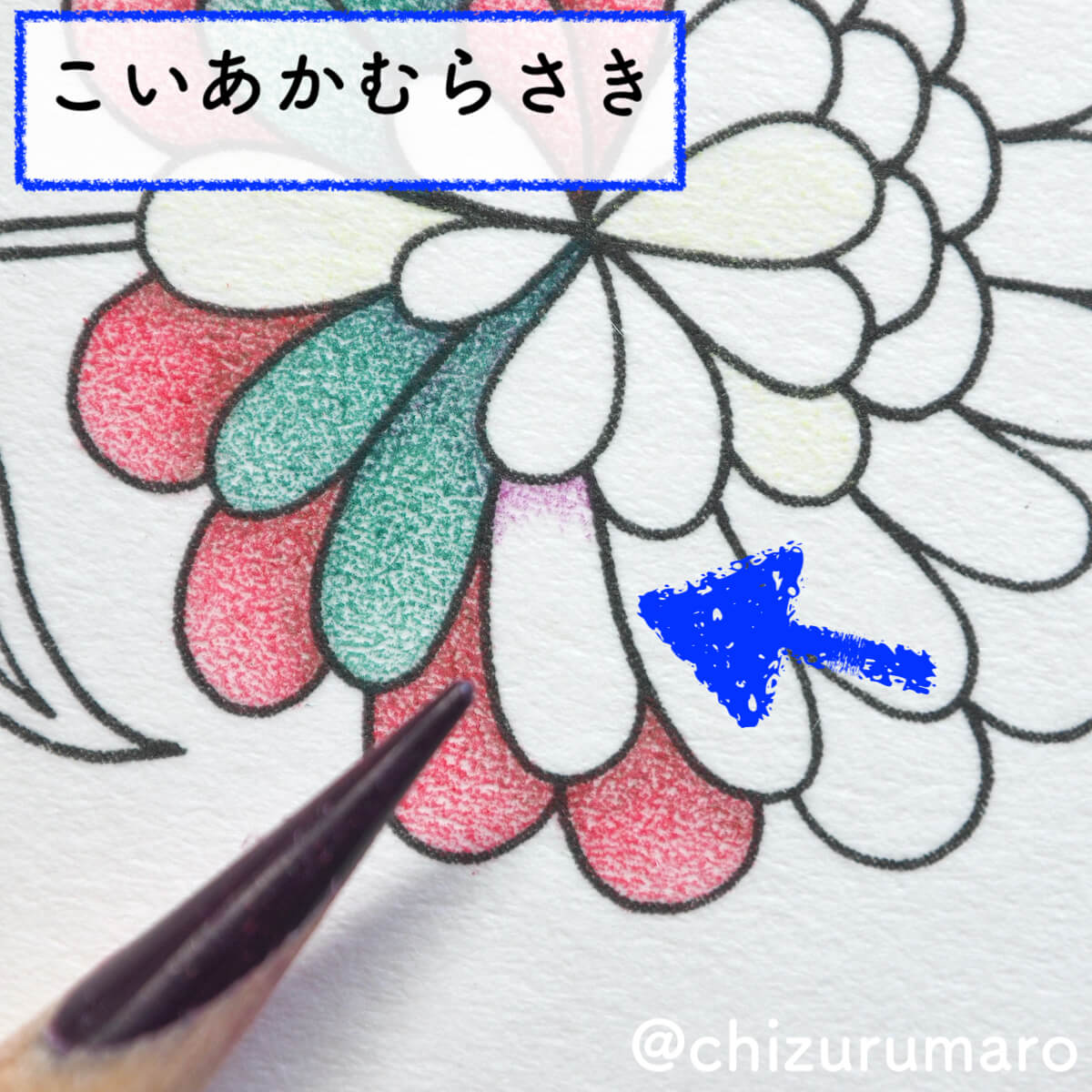 f:id:chizurumaro:20200511124940j:plain