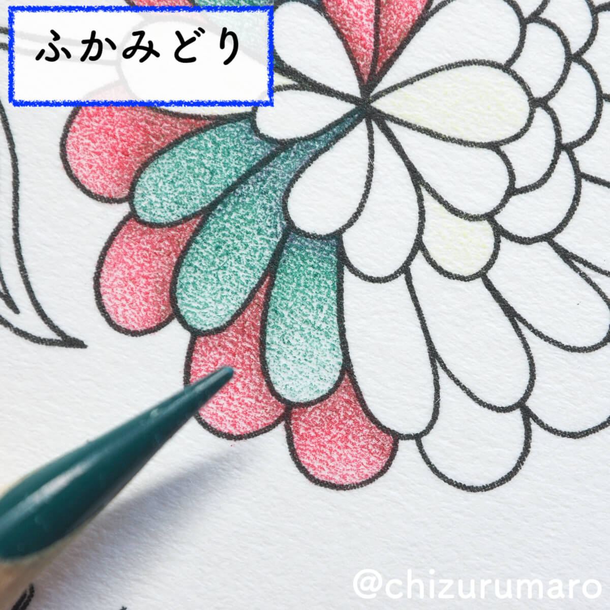 f:id:chizurumaro:20200511125003j:plain