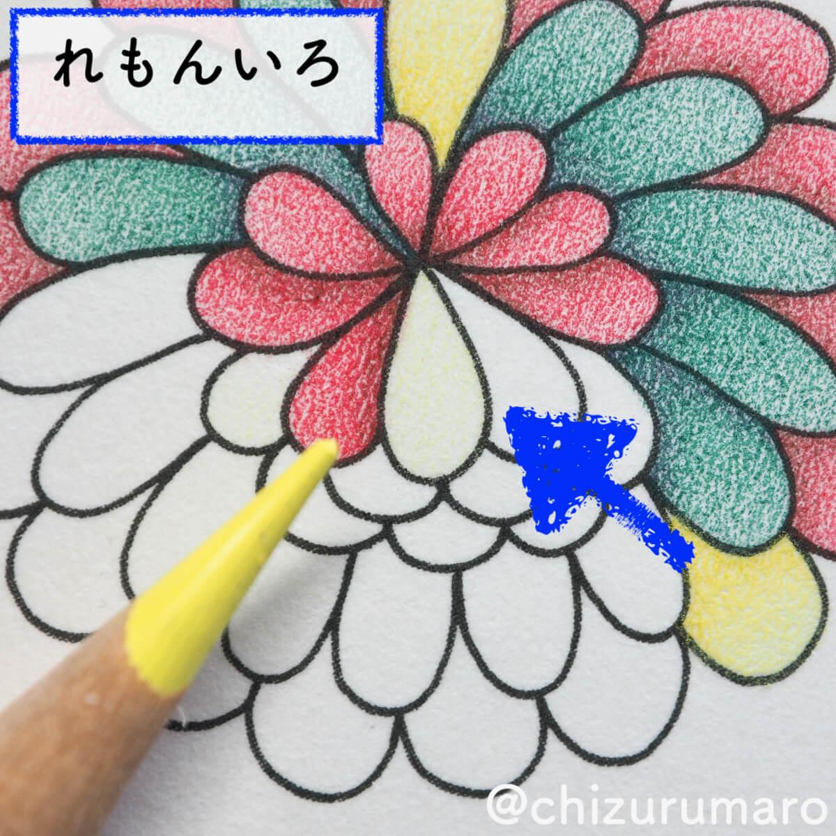 f:id:chizurumaro:20200511125044j:plain