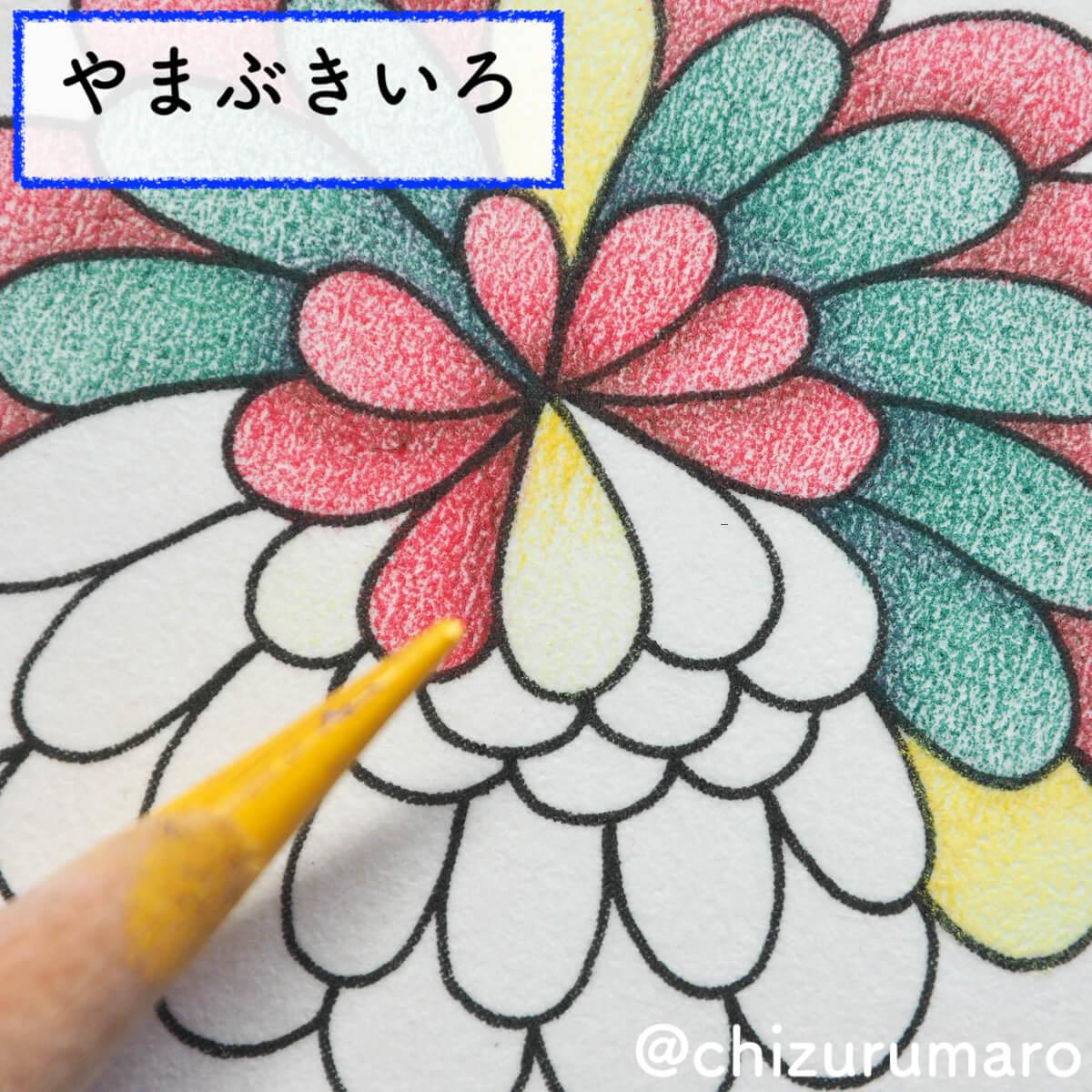 f:id:chizurumaro:20200511125056j:plain
