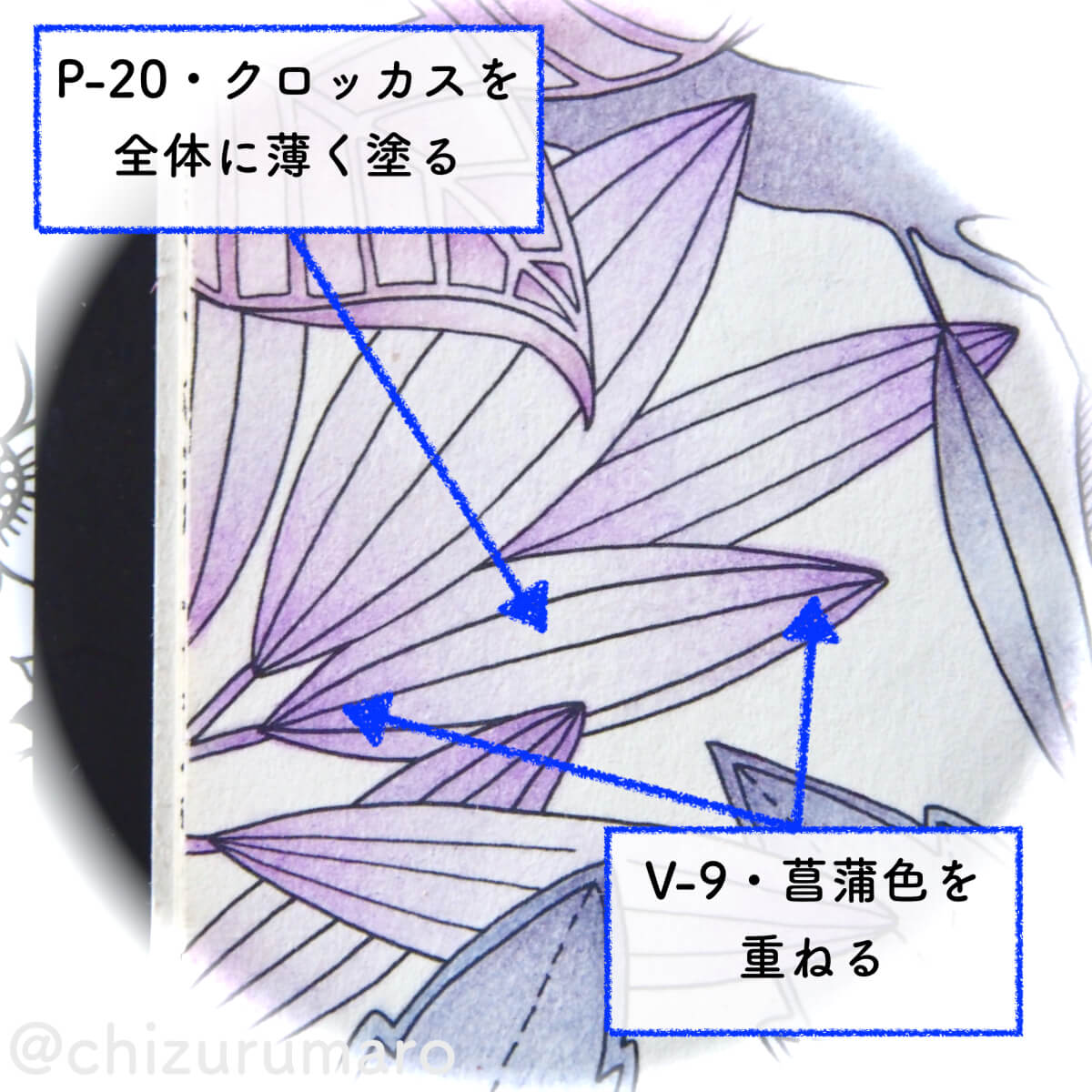 f:id:chizurumaro:20200513133411j:plain