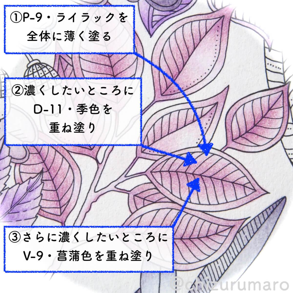 f:id:chizurumaro:20200513133604j:plain