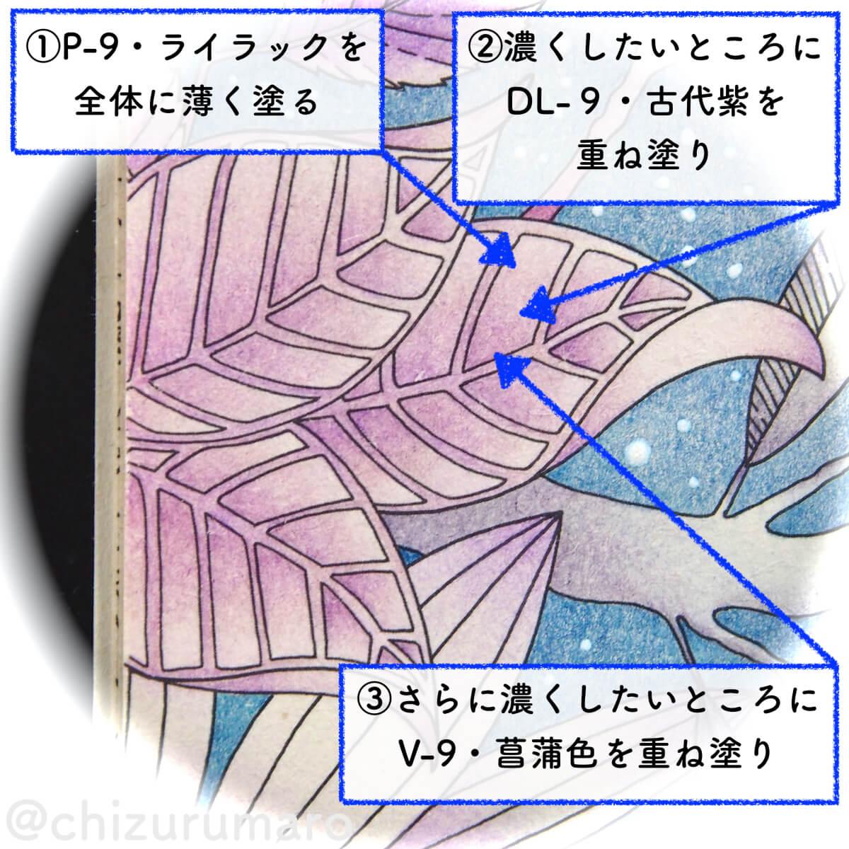 f:id:chizurumaro:20200513133636j:plain