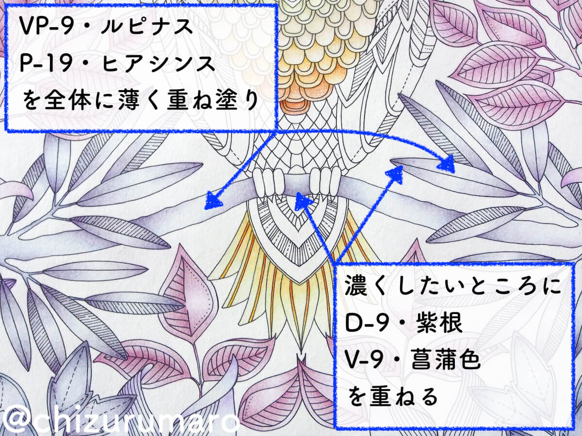 f:id:chizurumaro:20200513133710j:plain