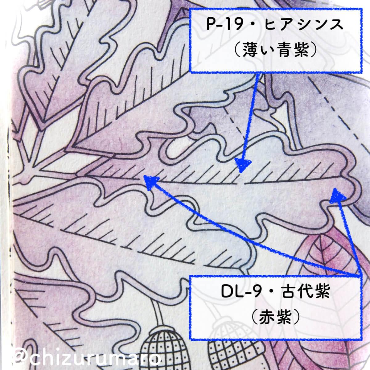 f:id:chizurumaro:20200513133801j:plain
