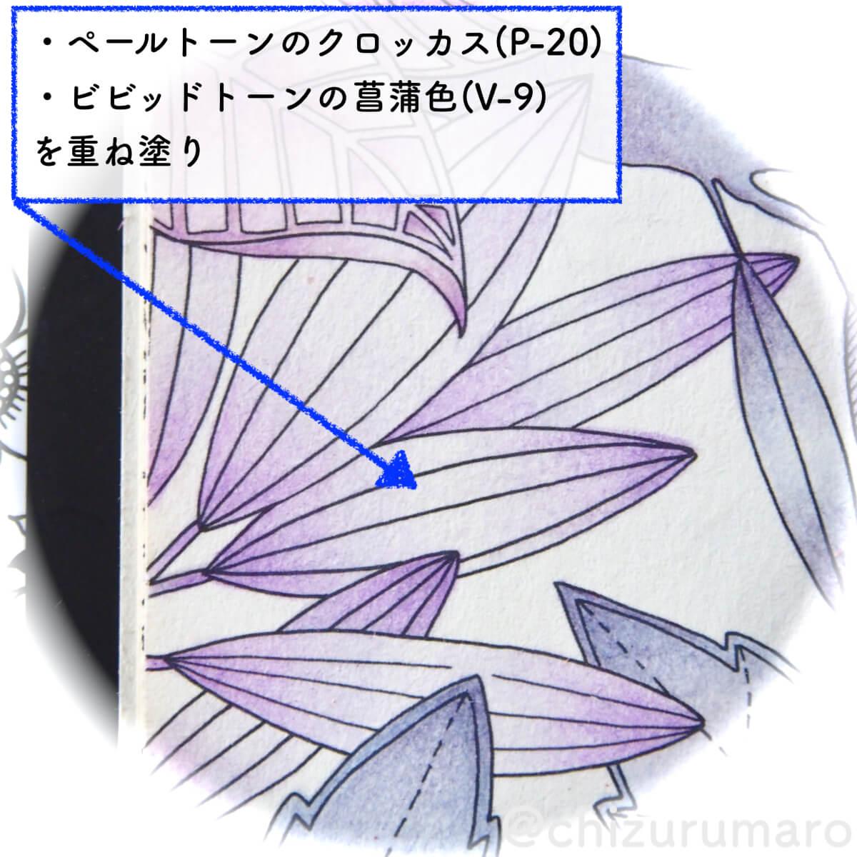 f:id:chizurumaro:20200513140030j:plain