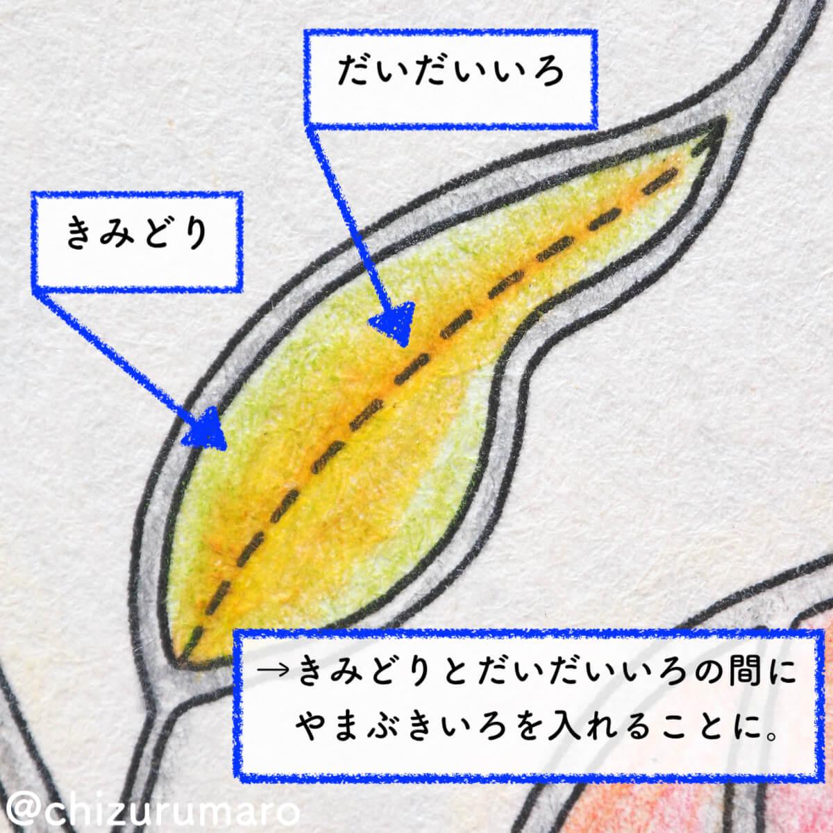 f:id:chizurumaro:20200518212432j:plain