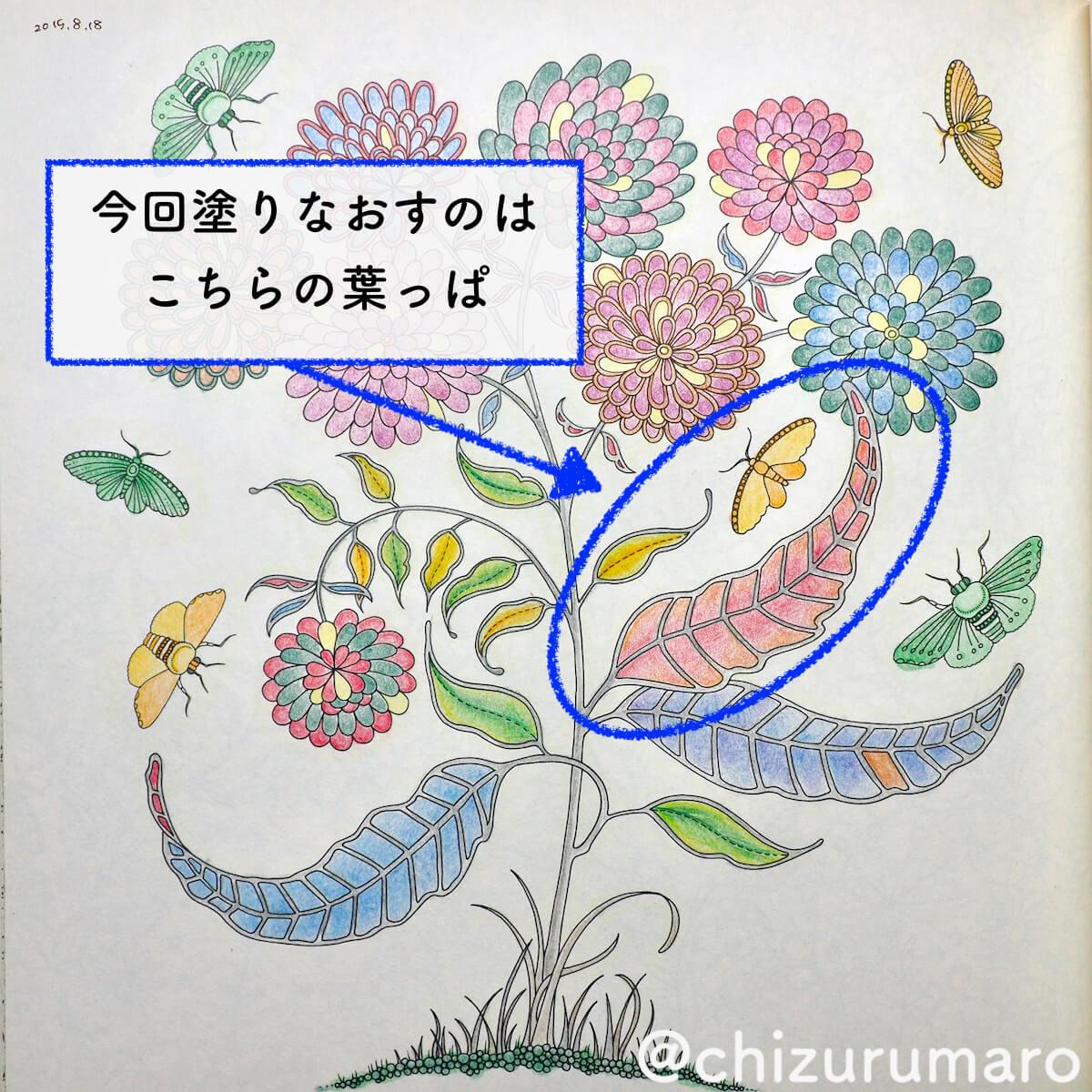 f:id:chizurumaro:20200603120954j:plain