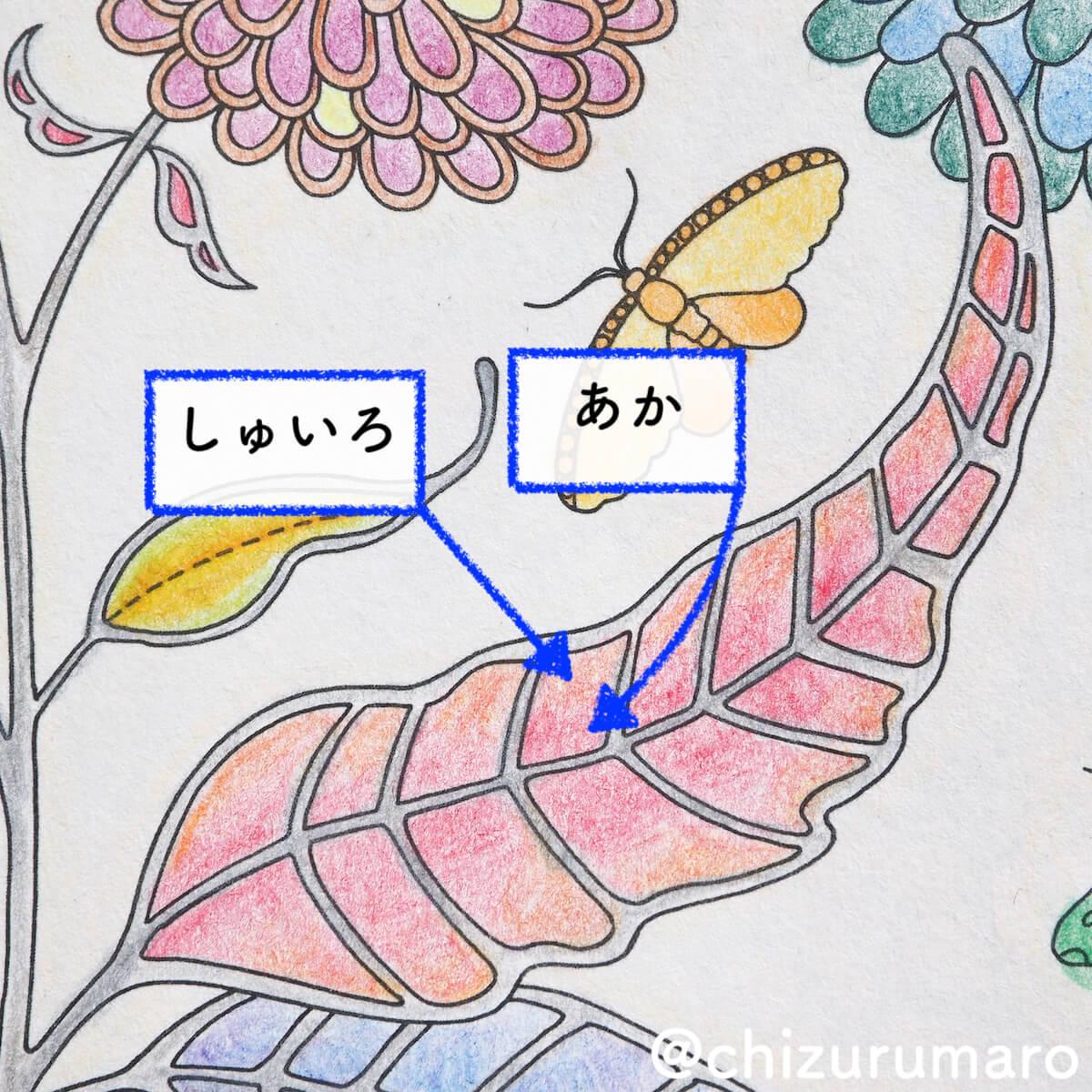 f:id:chizurumaro:20200603121040j:plain