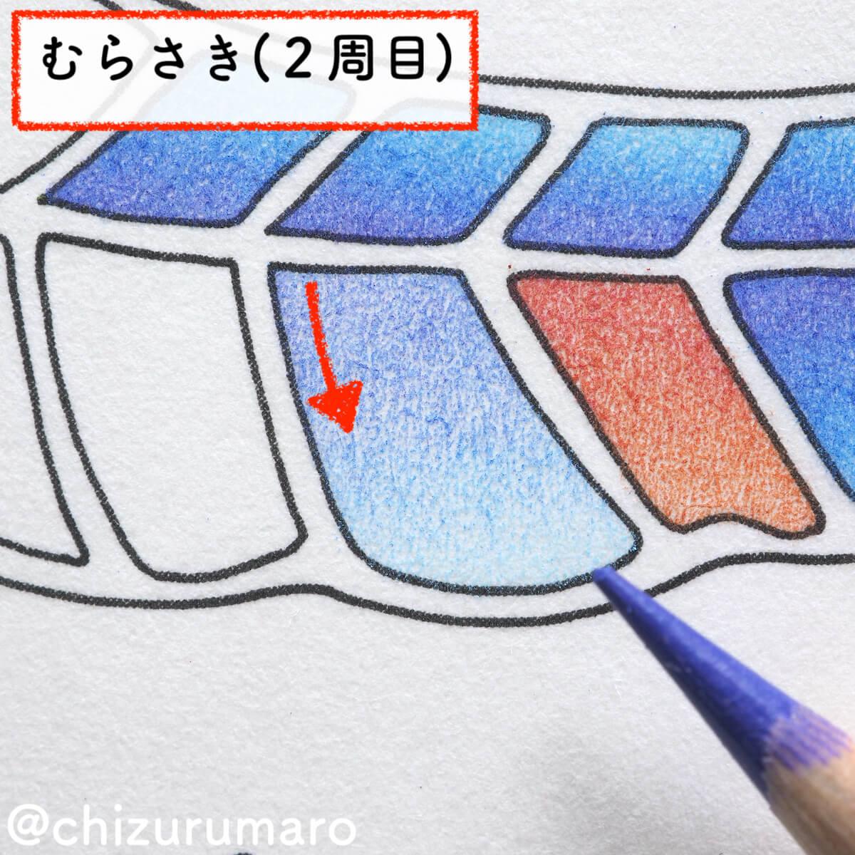 f:id:chizurumaro:20200609142143j:plain